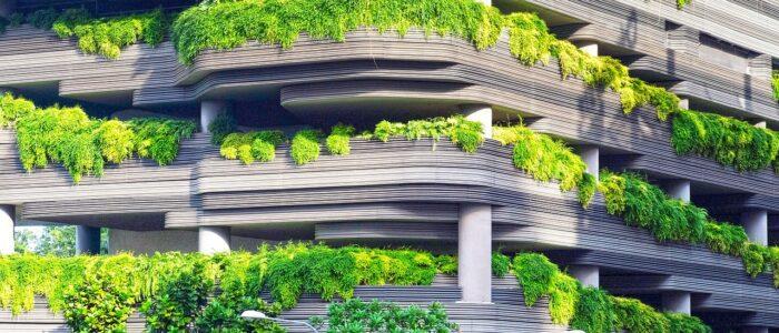 Pięknie i zdrowo – zakładamy ogródek na balkonie