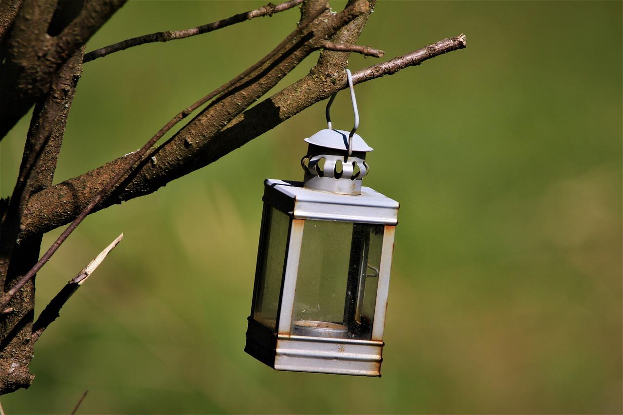 Zobacz swój ogród w nowym świetle