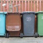 Co wrzucać do brązowego pojemnika na bioodpady?